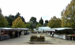Retour de notre marché du dimanche matin